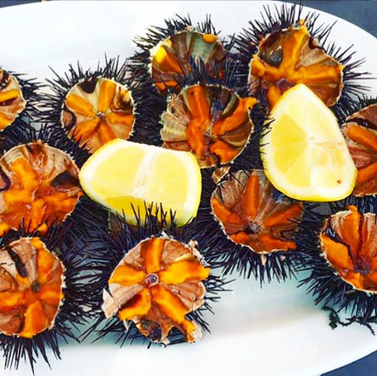 Their fresh sea urchins are a must order!